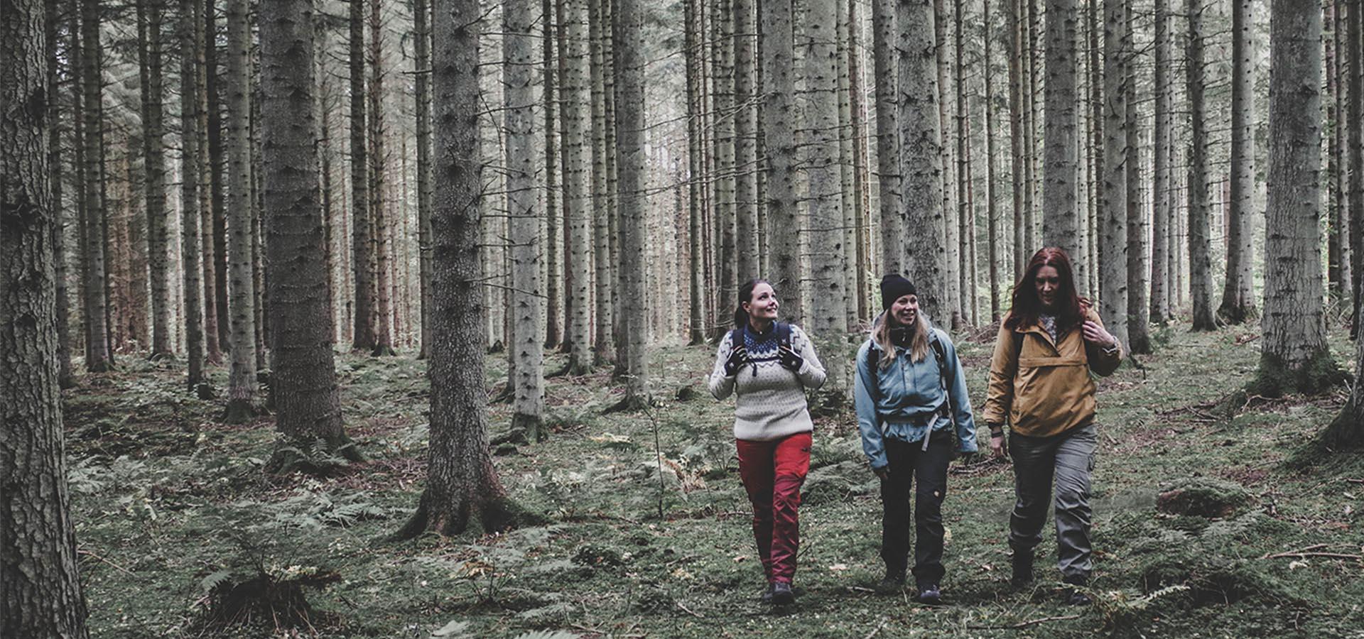 Hiking Omberg