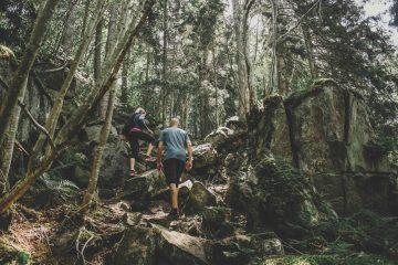 vandring på omberg
